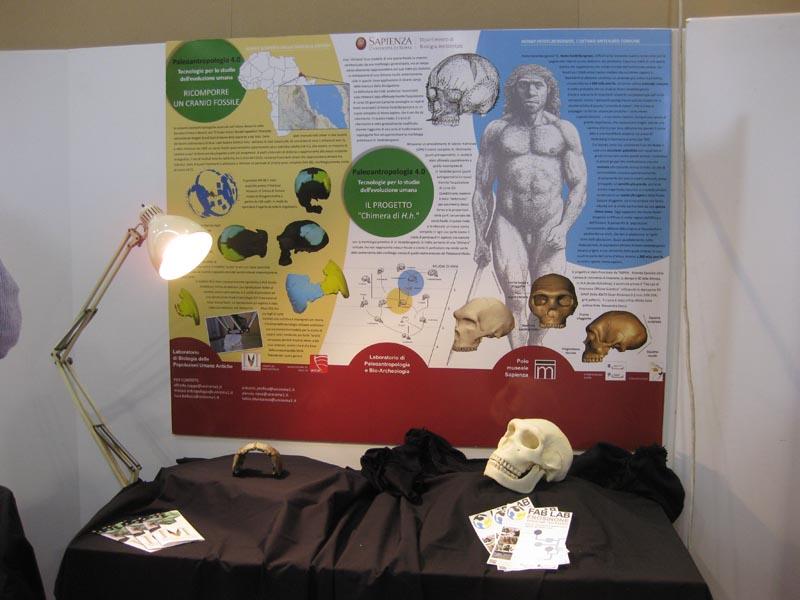 Paleontologia 2 Crani Stand La Sapiensa Maker Faire Giovanni Giobbi Vona Frosinone Made In Italy