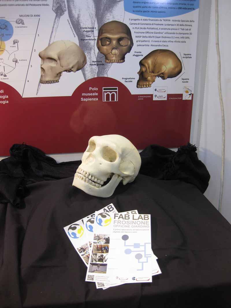 Paleontologia 3 Crani Stand La Sapiensa Maker Faire Giovanni Giobbi Vona Frosinone Made In Italy